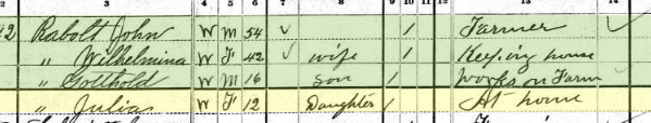 Juliane Rabold 1880 census Brazeau Township MO