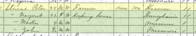 Peter Stueve 1870 census Brazeau Township MO