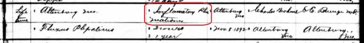 Stephanus Schuessler death record 2 Perry County MO