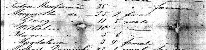 Anton Kaufmann family Johann Friedrich passenger list