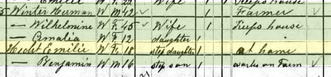 Emilie Hecht 1880 census Brazeau Township MO