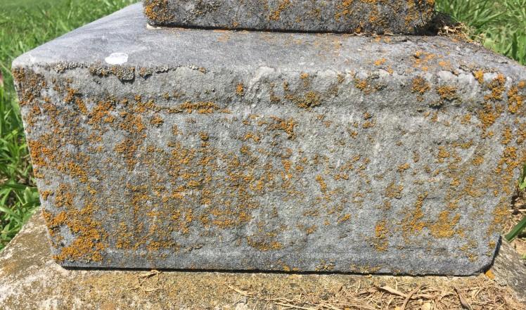 Emilie Hoehne gravestone close-up