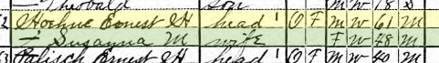 Ernst Hoehne 1920 census Brazeau Township MO