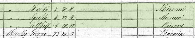 George Kaufmann 1870 census 2 Brazeau Township MO