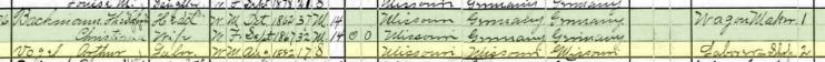 Arthur Vogel 1900 census Brazeau Township MO