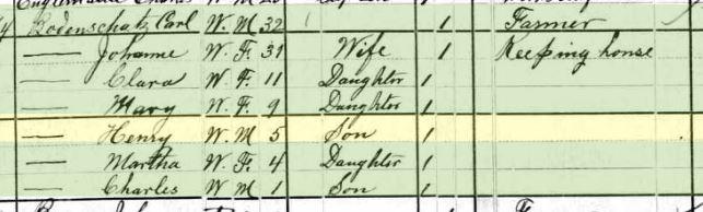Henry Bodenschatz 1880 census Apple Creek Township MO