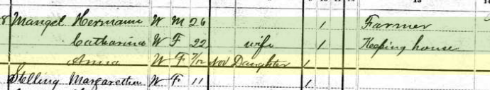Anna Mangels 1880 census Salem Township MO