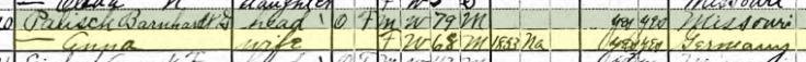 Anna Palisch 1920 census Brazeau Township MO