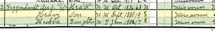 Henry Degenhardt 1900 census Brazeau Township MO