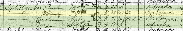 Hulda Splittgerber 1910 census Plum Creek Township NE