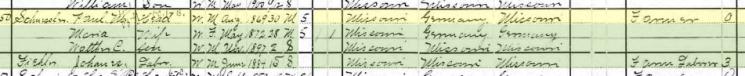 Paul Schuessler 1900 census Brazeau Township MO
