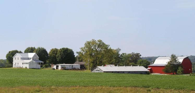 Weber Farm airbnb