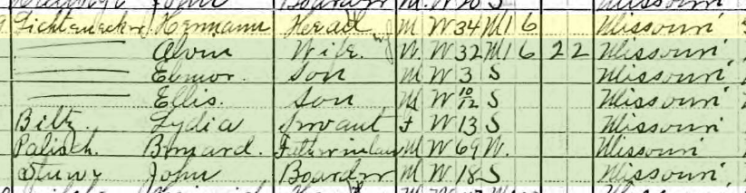 Herman Lichtenegger 1910 census Brazeau Township MO