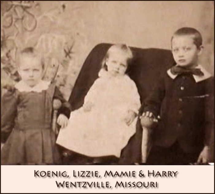 Lizzie Mamie, and Harry Koenig Wentzville MO