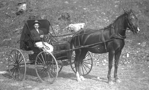 Willard Kieninger horse and buggy