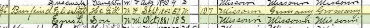 Elizabeth Burfeind 1900 census Brazeau Township MO