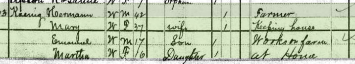 Sarah Koenig 1880 census 1 Salem Township MO