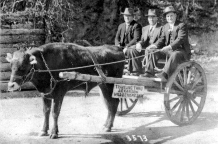 Wunderlich & Schmidt ox cart