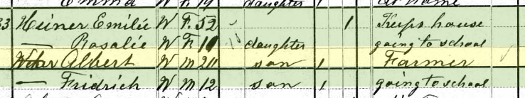 Albert Weber 1880 census Brazeau Township MO