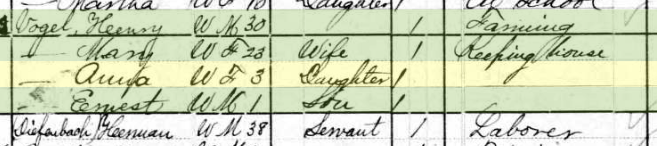 Anna Vogel 1880 census Fountain Bluff Township MO
