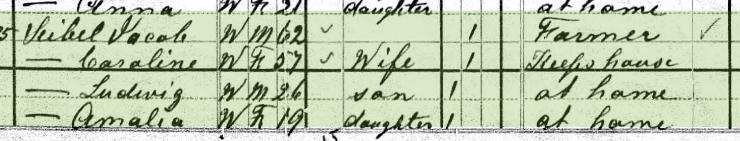 Gottlob Seibel 1880 census 1 Brazeau Township MO