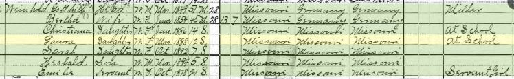 Laura Weinhold 1900 census Brazeau Township MO
