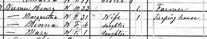 Marie Bremer 1880 census Brazeau Township MO