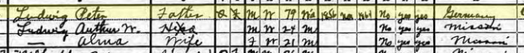 Peter Ludwig 1920 census Apple Creek Township MO