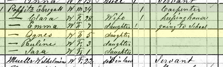 Agnes Poppitz 1880 census Brazeau Township MO