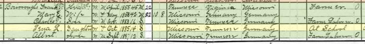 Linna Burroughs 1900 census Brazeau Township MO