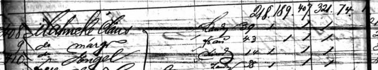 Mahnke family Cimbria passenger list Hamburg 1867