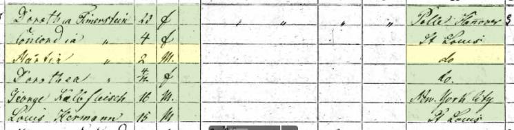 Martin S. Tirmenstein 1860 census 2 St. Louis MO