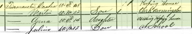 Martin S. Tirmenstein 1880 census St. Louis MO