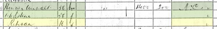 Rebecca Steirwald 1860 census Union County IL