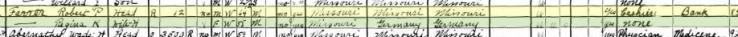 Robert Farrar 1930 census Bois Brule Township MO