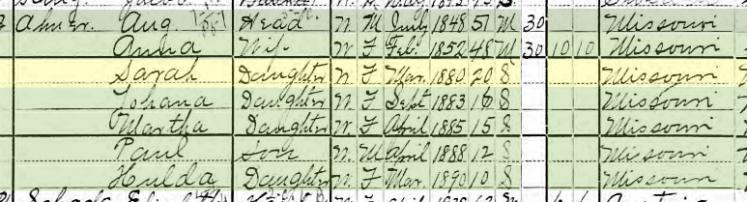 Sarah Ahner 1900 census Brazeau Township MO
