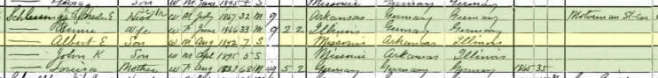 Albert Schlessinger 1900 census St. Louis MO