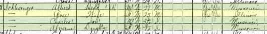 Albert Schlessinger 1920 census 1 St. Louis MO