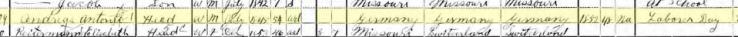 Anton Andreas 1900 census St. Louis MO