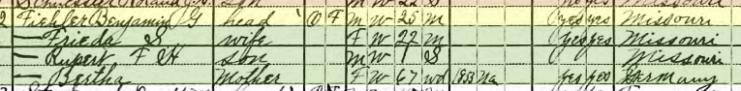 Benjamin Fiehler Jr. 1920 census Brazeau Township MO