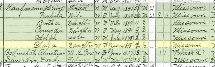 Clara Kaufmann 1900 census Brazeau Township MO