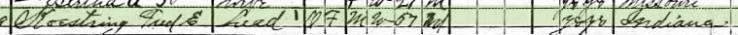 Eleonora Koestering 1920 census 1 Brazeau Township MO