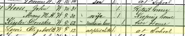 Elizabeth Lewis 1880 census Perryville MO