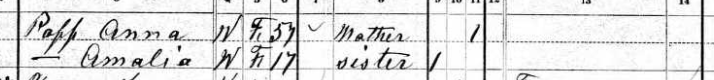 Martin Popp 1880 census 2 Brazeau Township MO