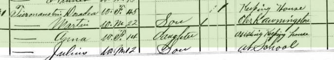 Otto Tirmenstein 1880 census 1 St. Louis MO