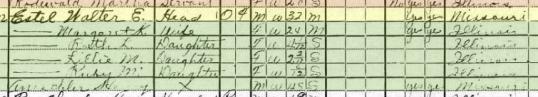 Walter Estel 1920 census 1 Fountain Bluff Township IL