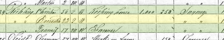 Ernstine Ruehling 1870 census Brazeau Township MO