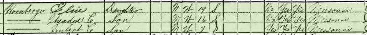 Michael Hornberger 1920 census 2 Central Township