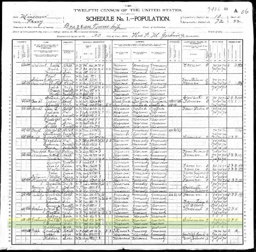 Theodore Goehring 1900 census Brazeau Township MO