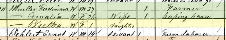 Bertha Mueller 1880 census Brazeau Township MO